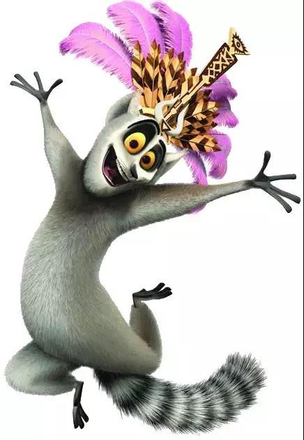 环尾狐猴看起来呆萌,却有一项让你哭笑不得的技能